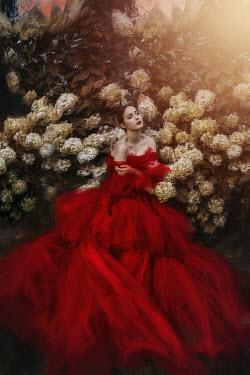 Beata Banach WOMAN IN RED DRESS BY WHITE FLOWERS Women