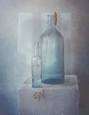 Andreeva Svoboda BOTTLES AND GRASS WITH WET GLASS ON PLINTH Miscellaneous Objects