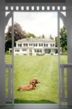 ILINA SIMEONOVA LARGE WHITE HOUSE WITH DOG LYING ON LAWN Houses