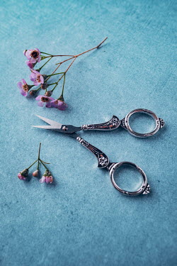 Magdalena Wasiczek SMALL SILVER SCISSORS Miscellaneous Objects