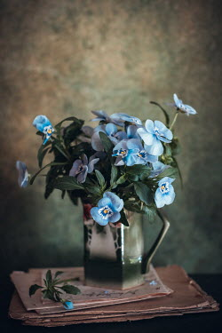 Magdalena Wasiczek BLUE FLOWERS IN SILVER JUG ON LETTERS Flowers