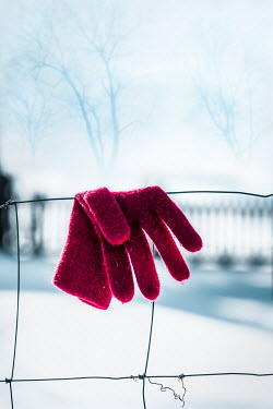 Magdalena Russocka red glove hanging on wire mesh fence