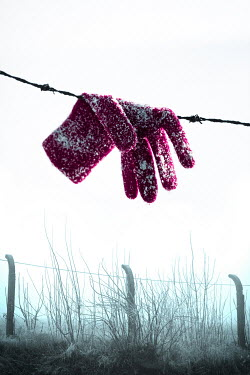 Magdalena Russocka red glove hanging on rusty barbed wire