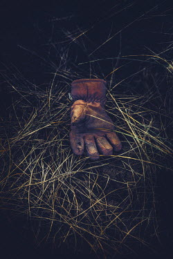 Nic Skerten OLD GLOVE LYING ON GRASS Miscellaneous Objects