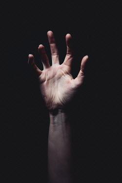Esme Mai Raised hand in shadow