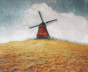 Anna Buczek Windmill on hill
