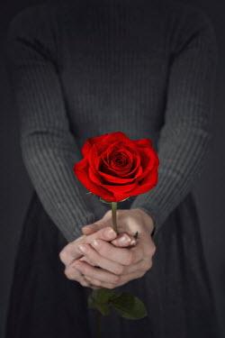 Emma Goulder FEMALE HANDS HOLDING RED ROSE Women