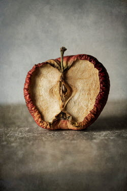 Jaroslaw Blaminsky ROTTING HALF APPLE Miscellaneous Objects