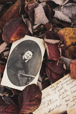 Paolo Martinez OLD POSTCARD AND PHOTOGRAPH LYING IN AUTUMN LEAVES
