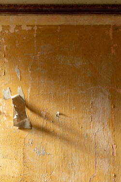 David Baker INTERIOR WALL WITH PEELING PLASTER