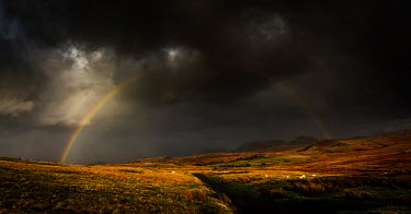 Maggie McCall MOORLAND WITH STORMY SKY AND RAINBOW