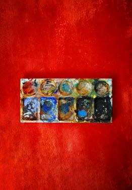 Lyn Randle ARTIST'S PAINT PALETTE