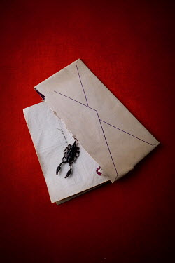 Magdalena Wasiczek LETTER AND ENVELOPE WITH SCORPION