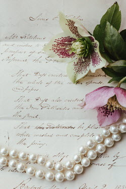 Matilda Delves FLOWERS AND PEARLS LYING ON LETTER