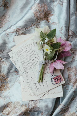 Matilda Delves FLOWERS AND PEARLS LYING ON POSTCARDS AND FABRIC