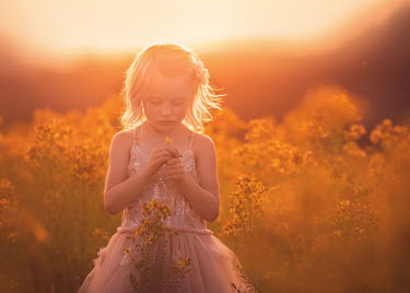 Lisa Holloway BLONDE LITTLE GIRL IN SUNLIT MEADOW