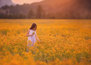 Lisa Holloway YOUNG GIRL STANDING IN YELLOW MEADOW