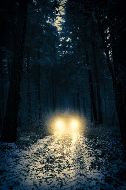 Magdalena Russocka car with headlights on road in misty woods