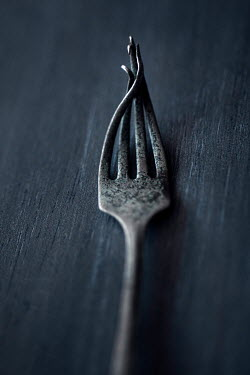 Lisa Bonowicz OLD TWISTED METAL FORK