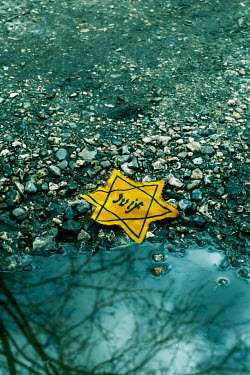 CollaborationJS YELLOW STAR OF DAVID BADGE LYING BY PUDDLE