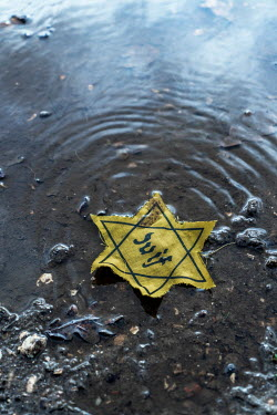 CollaborationJS YELLOW STAR OF DAVID BADGE LYING IN PUDDLE