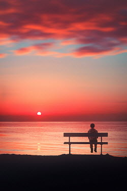 Evelina Kremsdorf LITTLE BOY ON BENCH WATCHING SEA AT SUNSET
