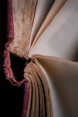 Lisa Bonowicz CLOSE UP OF OLD BOOK
