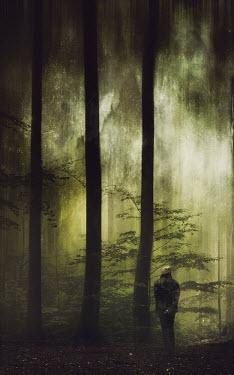 Dirk Wustenhagen MAN STANDING IN FOREST AT DUSK