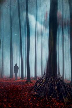 Dirk Wustenhagen SILHOUETTED MAN IN FOREST WITH BONFIRE