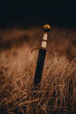 Rebecca Stice MEDIEVAL SWORD IN GOLDEN GRASS