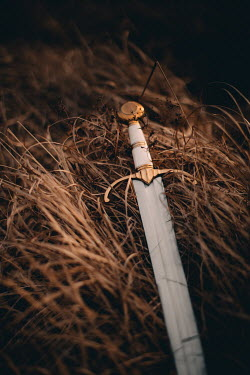 Rebecca Stice MEDIEVAL SWORD LYING IN GOLDEN GRASS