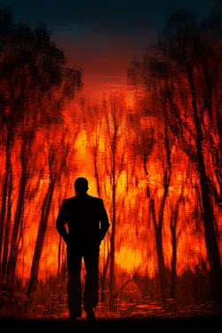 Magdalena Russocka silhouette of man walking in forest fire