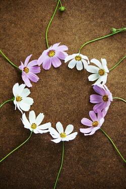 Kerstin Marinov CIRCLE OF PINK AND WHITE FLOWERS