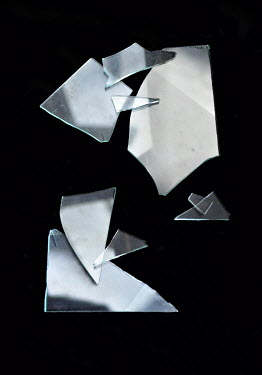 Lyn Randle BROKEN PIECES OF GLASS