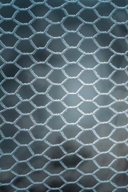 Magdalena Russocka frosted mesh