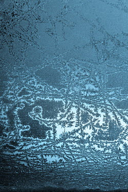 Magdalena Russocka frost on window