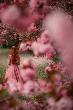 Rebecca Stice HISTORICAL WOMAN BY TREES IN BLOSSOM