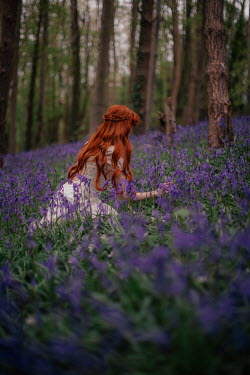 Rebecca Stice WOMAN WITH RED HAIR PICKING BLUEBELLS IN FOREST