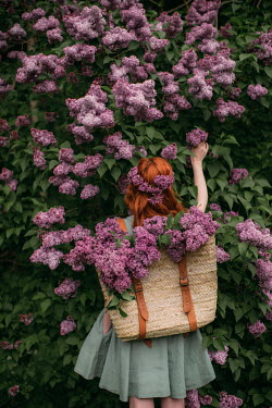 Rebecca Stice GIRL WITH RED HAIR PICKING LILAC