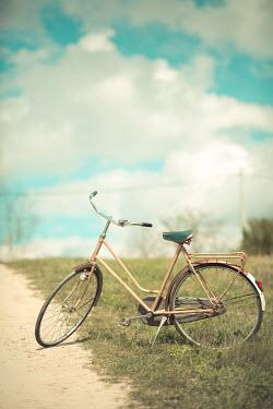 Ildiko Neer Abandoned bicycle in grass