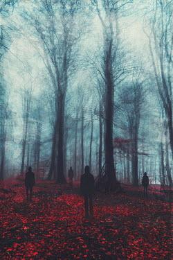 Dirk Wustenhagen SILHOUETTED MEN WITH HOODS IN AUTUMN FOREST