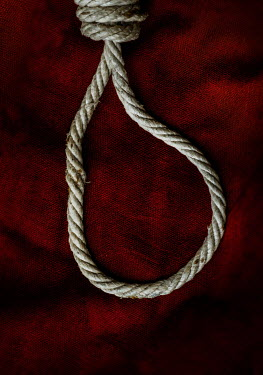 Stephen Mulcahey ROPE NOOSE LYING ON RED CLOTH