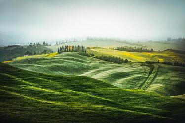 Evelina Kremsdorf ITALIAN LANDSCAPE WITH FIELDS AND TREES