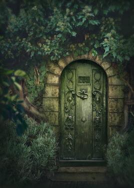 Elena Schweitzer ORNATE GREEN DOOR WITH PLANTS