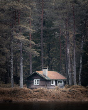 Paul Sheen SMALL CABIN IN FOREST BY LAKE