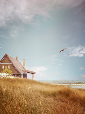 Victoria Davies HOUSE BY SEA WITH DUNES