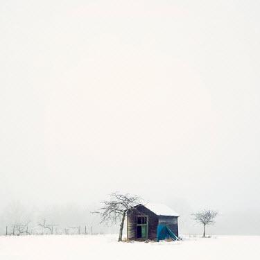 Carmen Spitznagel ABANDONED WOODEN HUT IN SNOWY FIELD
