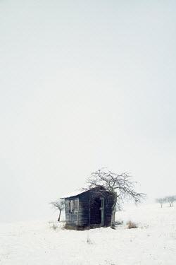 Carmen Spitznagel SMALL WOODEN HUT IN SNOWY FIELD