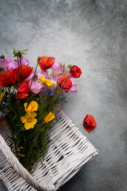 Galya Ivanova BUNCH OF FLOWERS ON WHITE BASKET