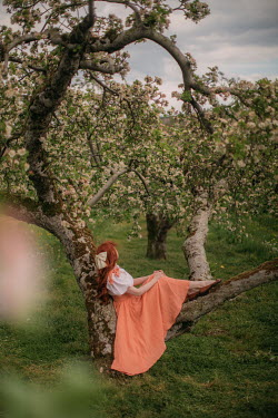 Rebecca Stice WOMAN WITH RED HAIR LYING IN TREE OF BLOSSOM